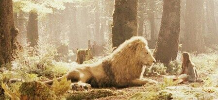 Lion Narnia And Lucy Image Narnia Pinterest Narnia