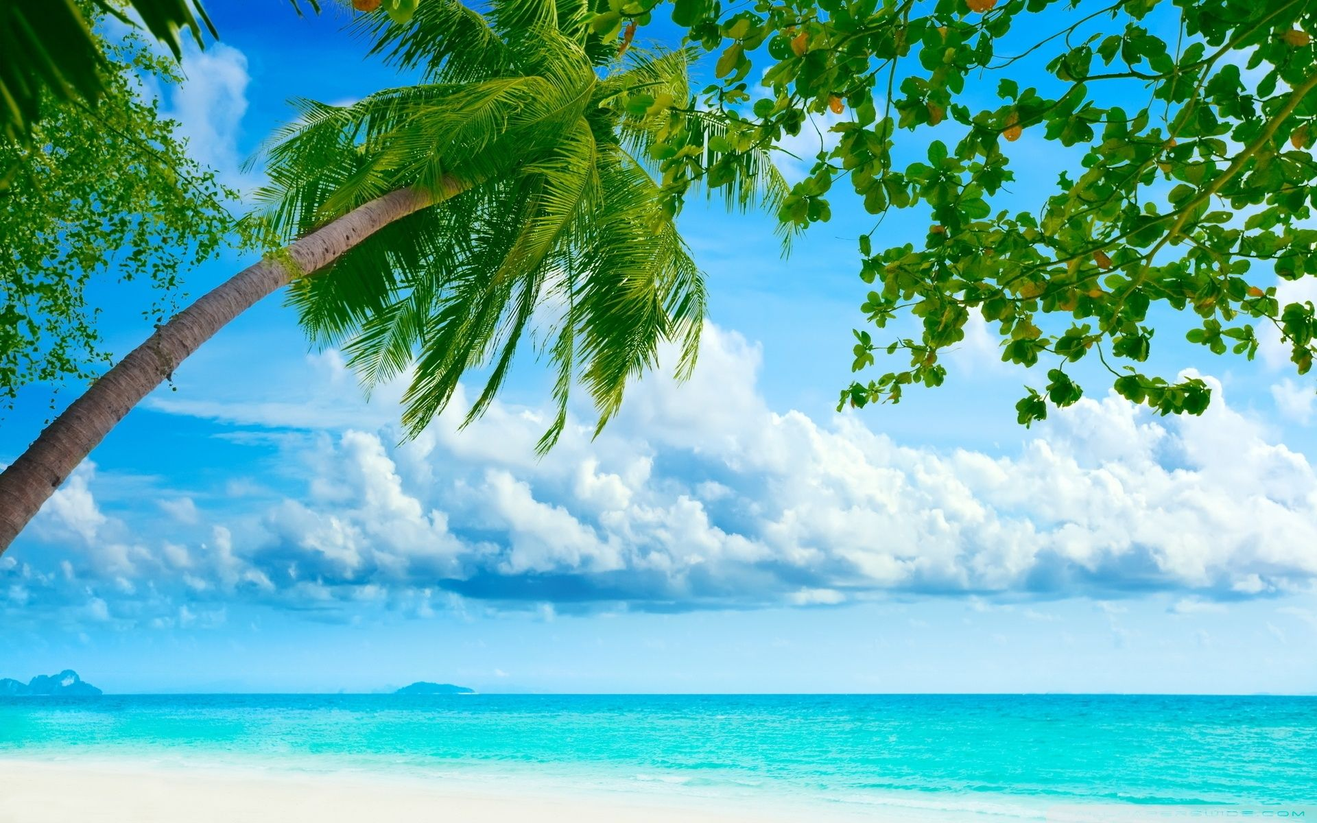 Tropical Beach Beautiful Hd Desktop Wallpapers Free Wide Images Jpg