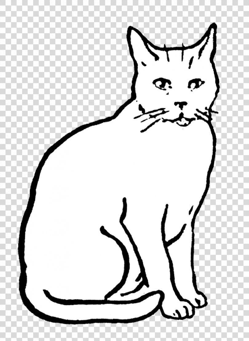 Cat Drawing Line Art Clip Art Cat Png Cat Art Art Museum Artwork Black Cat Drawing Line Art Drawings
