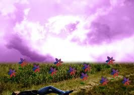 Evanescence Imaginary In My Field Of Paper Flowers And Candy