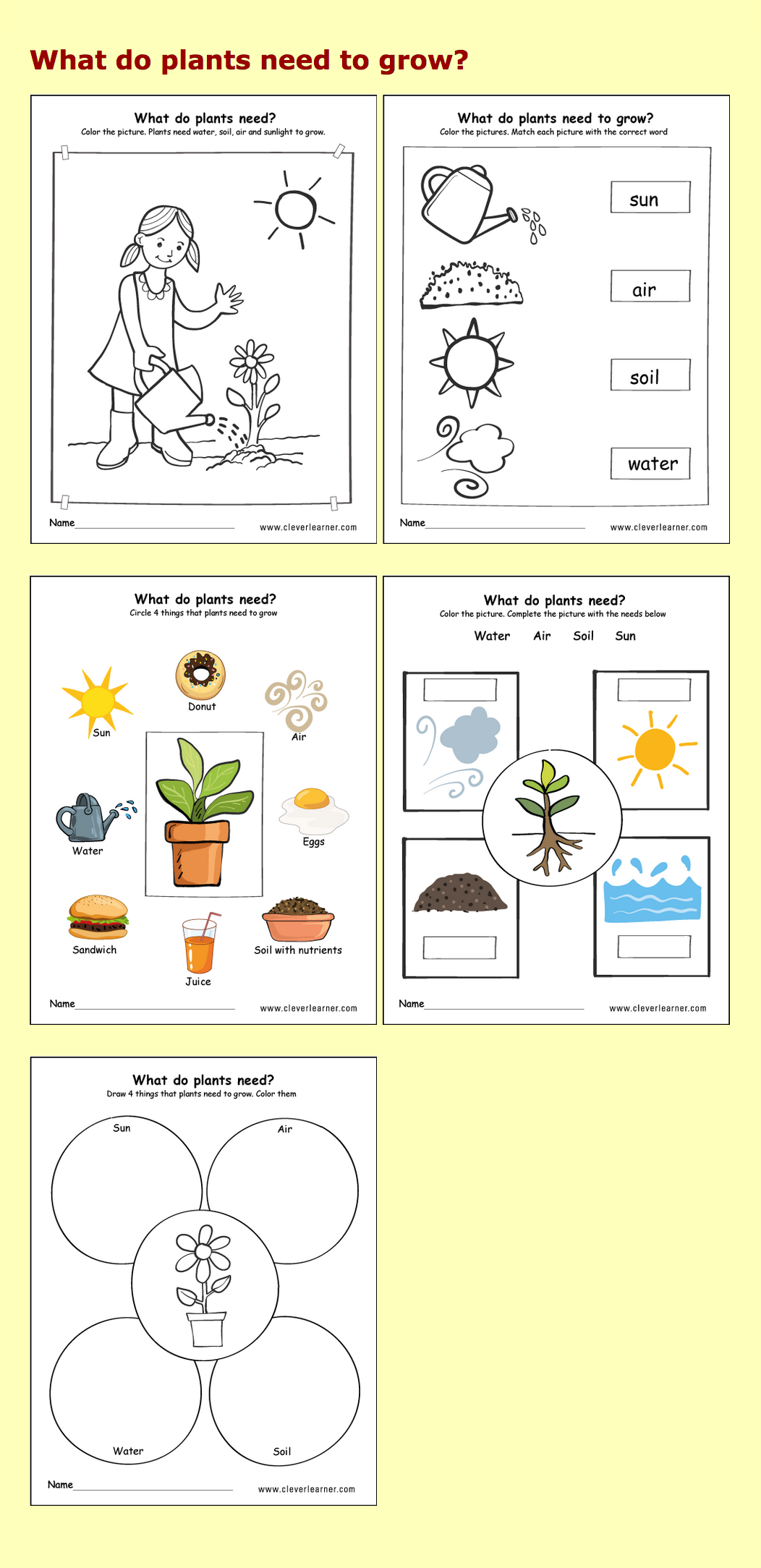 Needs Of Plants Kindergarten Worksheets Preschool