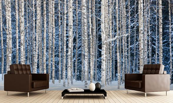 160930083654forest wall mural 5 jpg 588 350 forest on wall murals id=37941