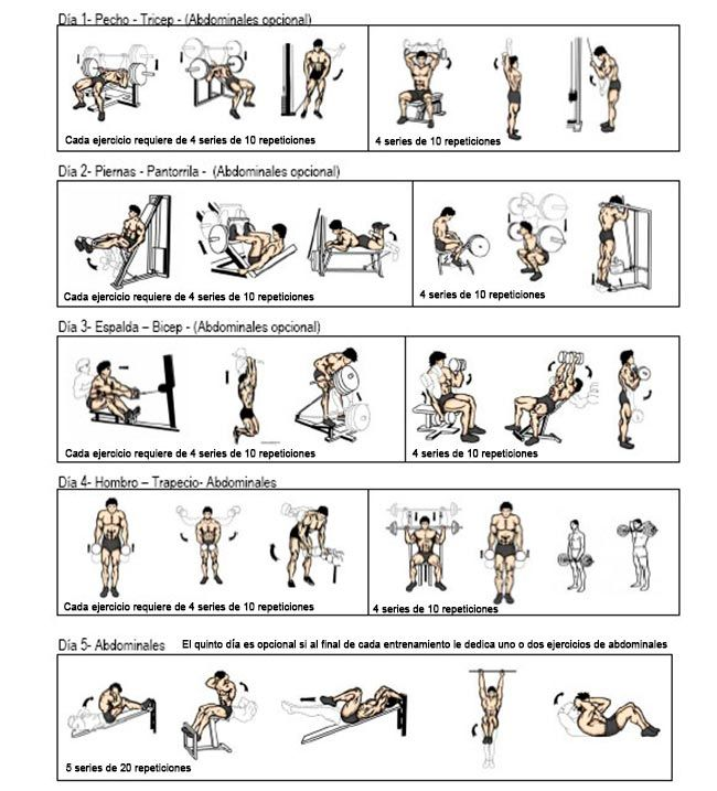 Ejercicios para ganar masa muscular fitness pinterest for Gimnasio las tablas