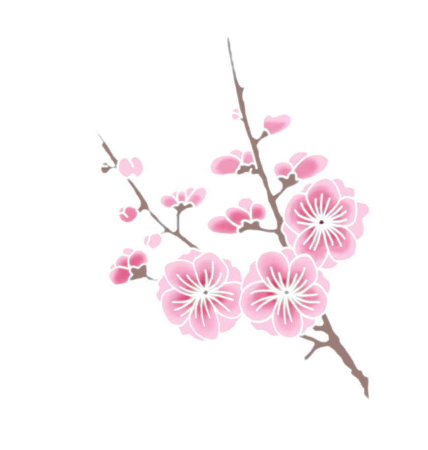 cherry blossom png - Google Search | Floral PNG ...