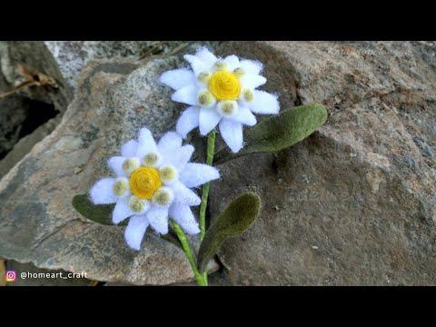 14 Felt Flowers Diy How To Make Edelweiss Felt Flower Tutorial Felt Easy Youtube Felt Flowers Flower Tutorial Felt Flowers Diy