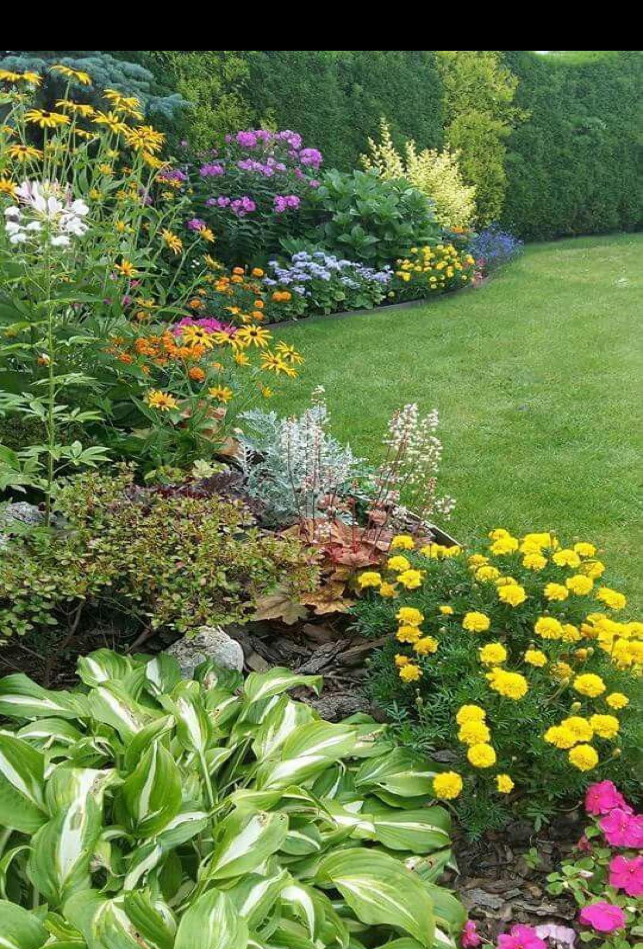 49 Inspiring Butterfly Garden Design Ideas In 2020 Cottage