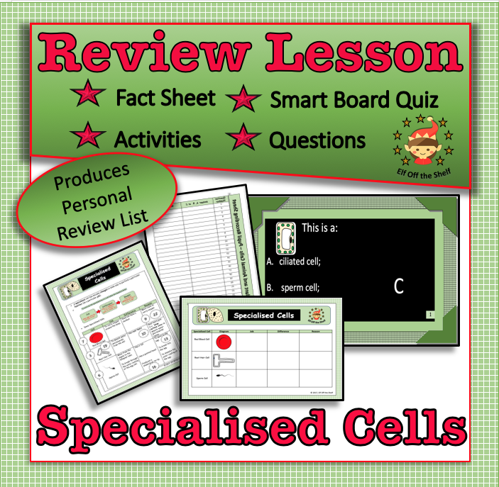 Specialized Cells - Review Activity   Plant and animal ...