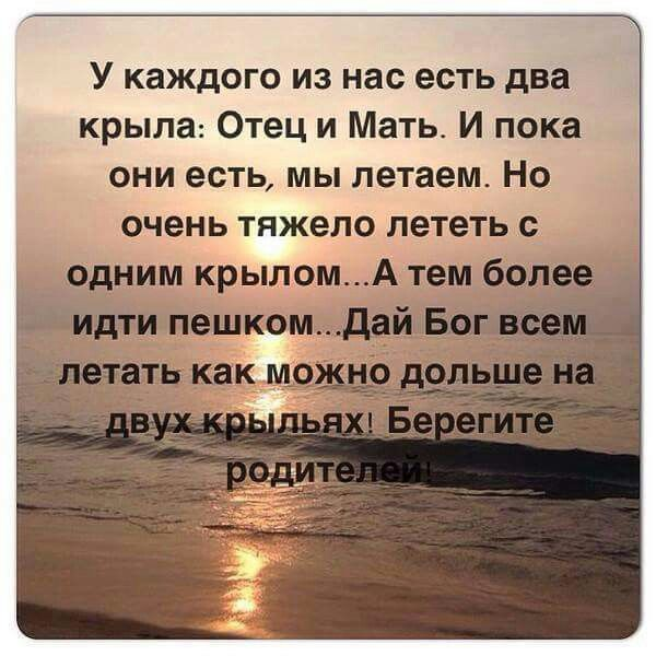 Beregite Roditelej Brainy Quotes Words True Words