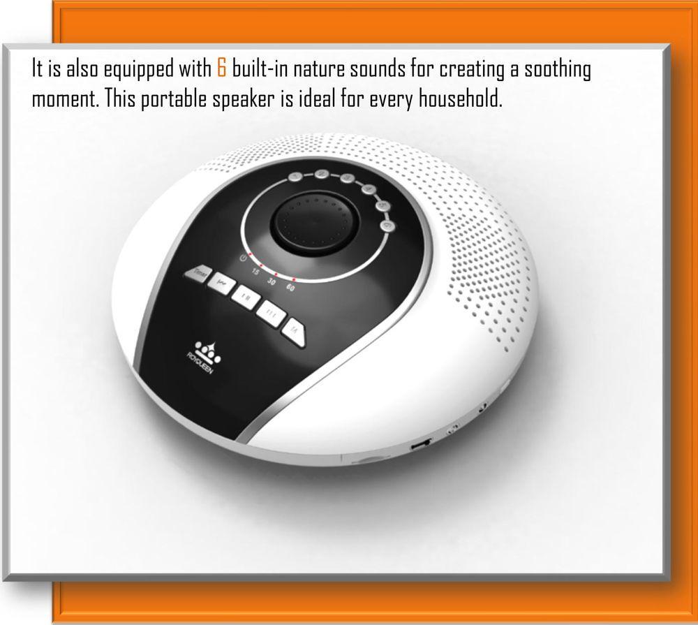 Royqueen H1000 Portable Turbo Bass Mini Speaker For Iphone Samsung Sd Fm Radio