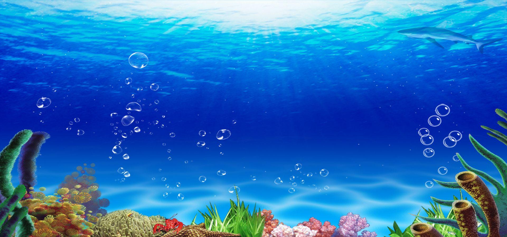 Fondo Del Mundo Submarino Fondo De Pecera Fondo De Mar Fondo Marino Dibujo
