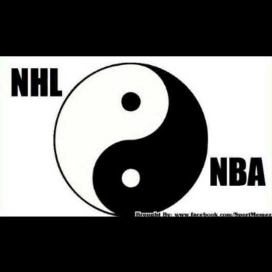 The Difference Between The Nhl And The Nba Imgur Very Funny Images Nhl Funny Images