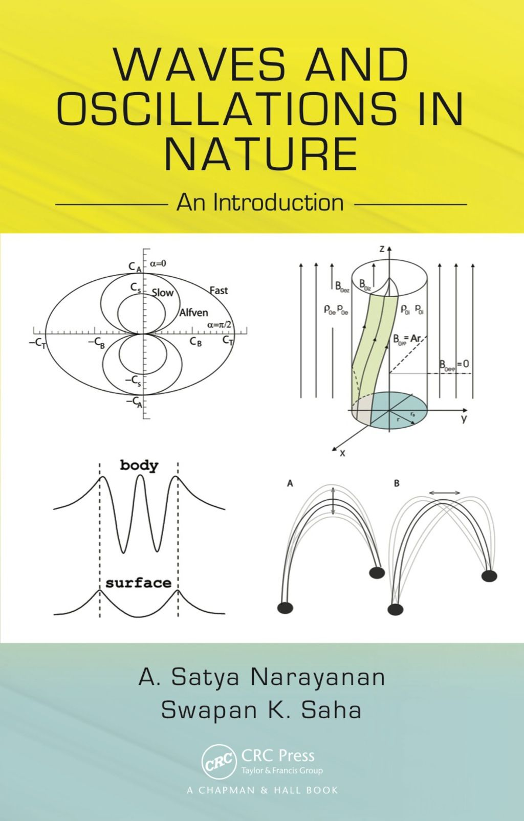 Waves and Oscillations in Nature (eBook Rental) in 2019