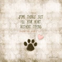 Some Things Just Fill Your Heart Without Trying 3 The Love Of
