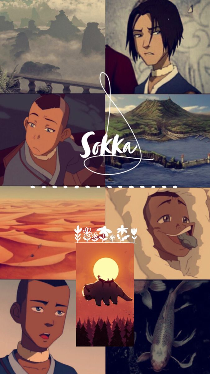 Couldn T Find Any Good Backgrounds For Sokka So I Made One In 2020 Avatar Airbender Avatar Funny Avatar Aang