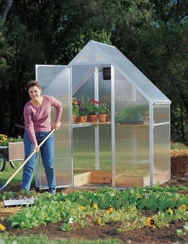 Pin On Garden Gardening