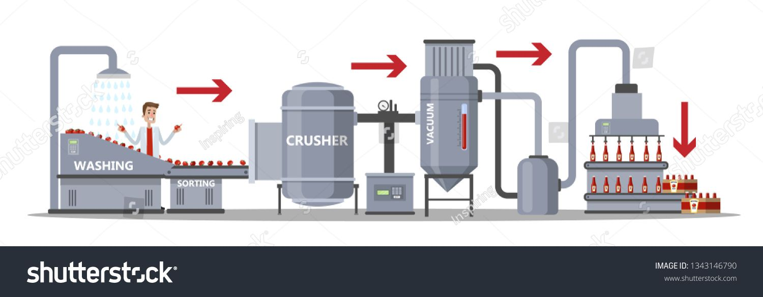 Ketchup Manufacture Process Tomato Sauce Industry Washing Tomatoes Sorting Crushing Vegetables And Packaging Bottles Tomato Sauce Ketchup Sauce For Chicken