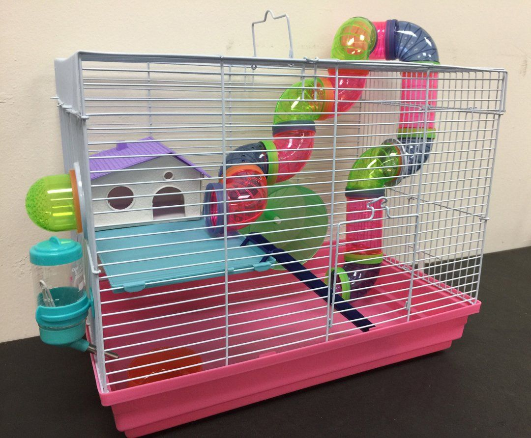 Hamster Mouse Gerbil Rat Small Animal Cage Two Levels For Even More Information Visit Image Link This Is An Aff Small Animal Cage Gerbil Hamster Habitat