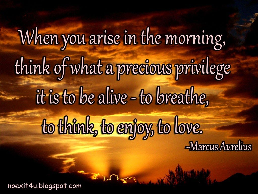 Good Morning Positive Quotes Pinlin Soni On Morning Nights Days  Pinterest  Daily Qoutes