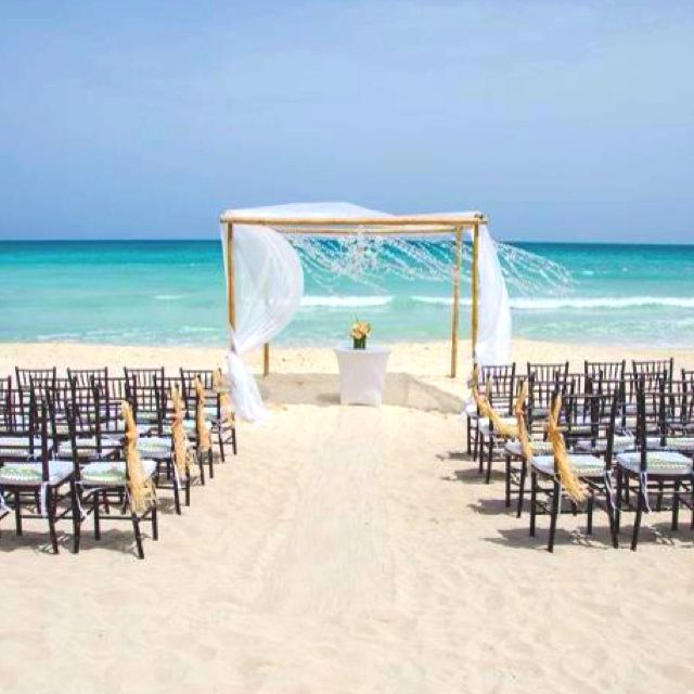 Beach Wedding Ceremony Tiffany Chairs Starfish Chair