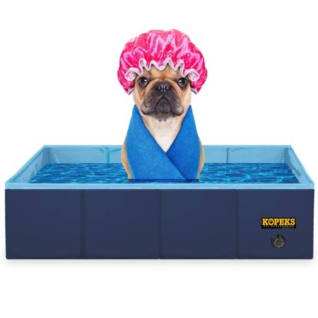 Pets In 2020 Dog Swimming Pools Swimming Pools Pets