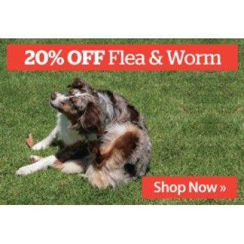 20 Off Sale On Flea Worm Treatments For Dogs Pet Bargain Bro Pet Dogs Fleas Pets