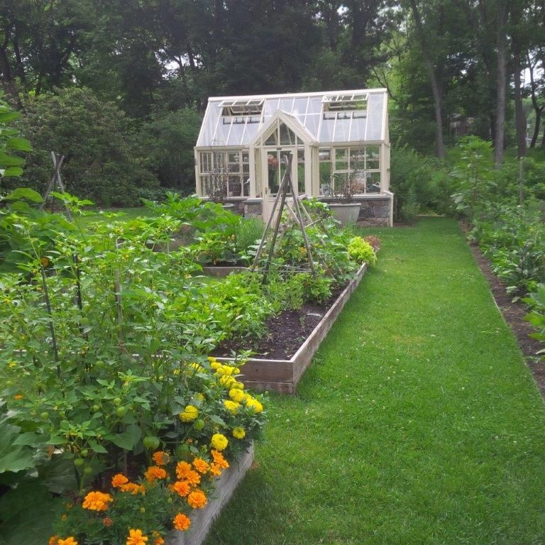A Beautiful Hartley Botanic Greenhouse In Situ, Within A