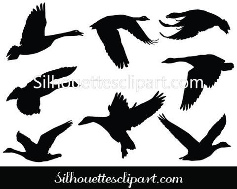 goose flying silhouette vector graphics