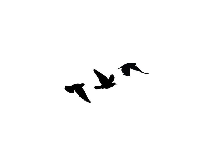 Black Bird Motif Tattoodesign Bird Silhouette Tattoos Flying Bird Tattoo Small Bird Tattoos