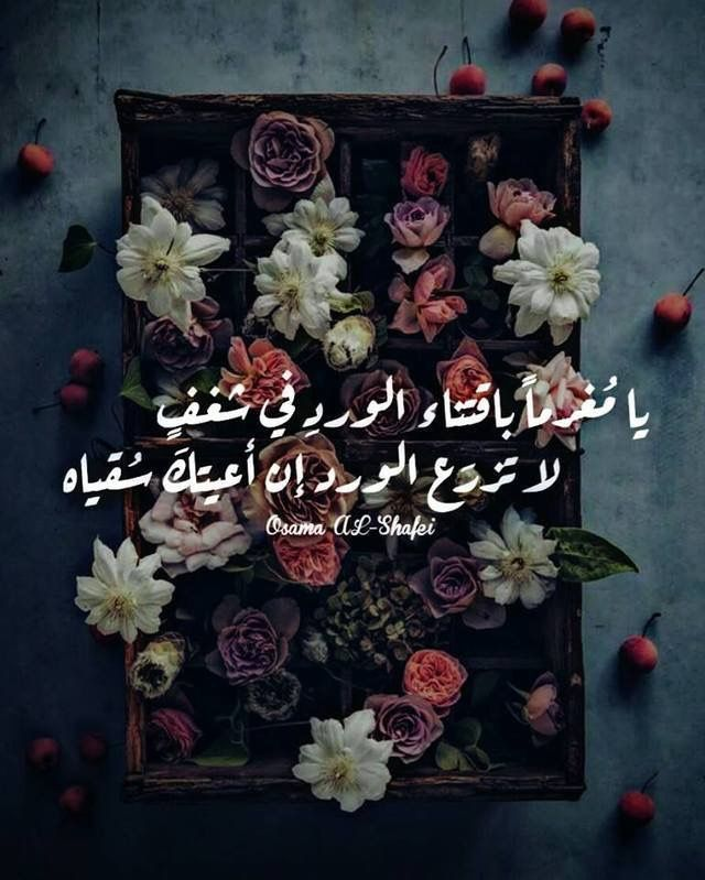 Pin By Iman Kou On عاشقة الورد Arabic Quotes Sweet Quotes Words Quotes