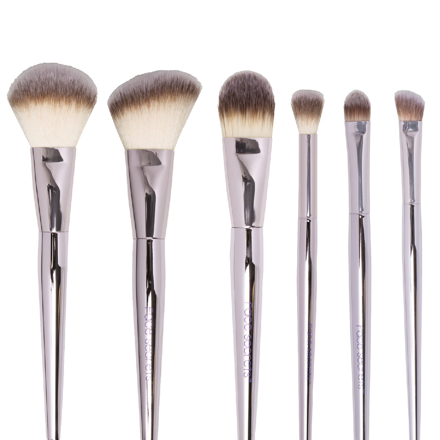 Beauty Secrets 6 Piece Cosmetic Brush Set | Makeup Brushes
