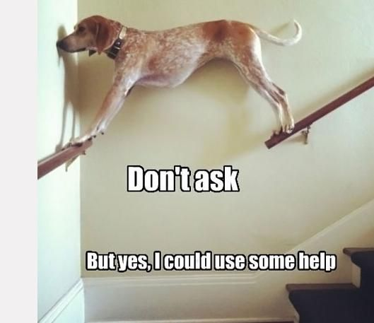 But yes, I could use some help