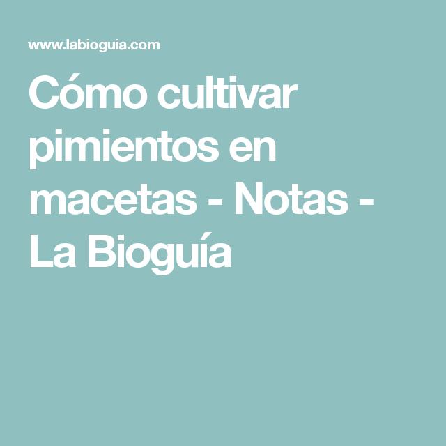 Bioguía Inspirando El Cambio Cultivar Cultivar Hongos Cultivo De Suculentas