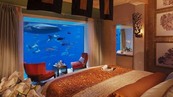 Fantastic... Aquarium Bedroom