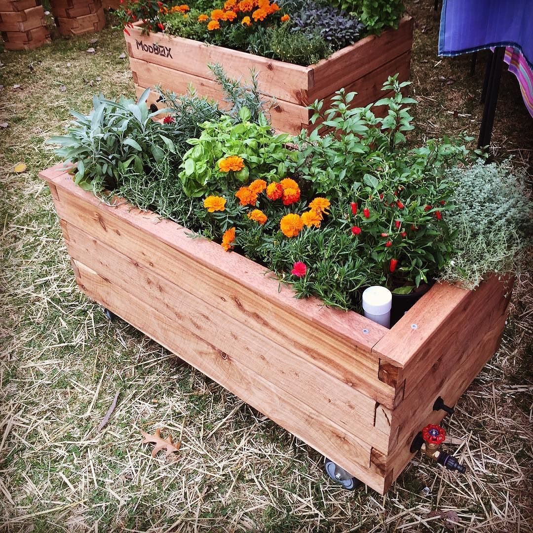 ModBOX Raised Garden Bed on Wheels. Grande Plus with