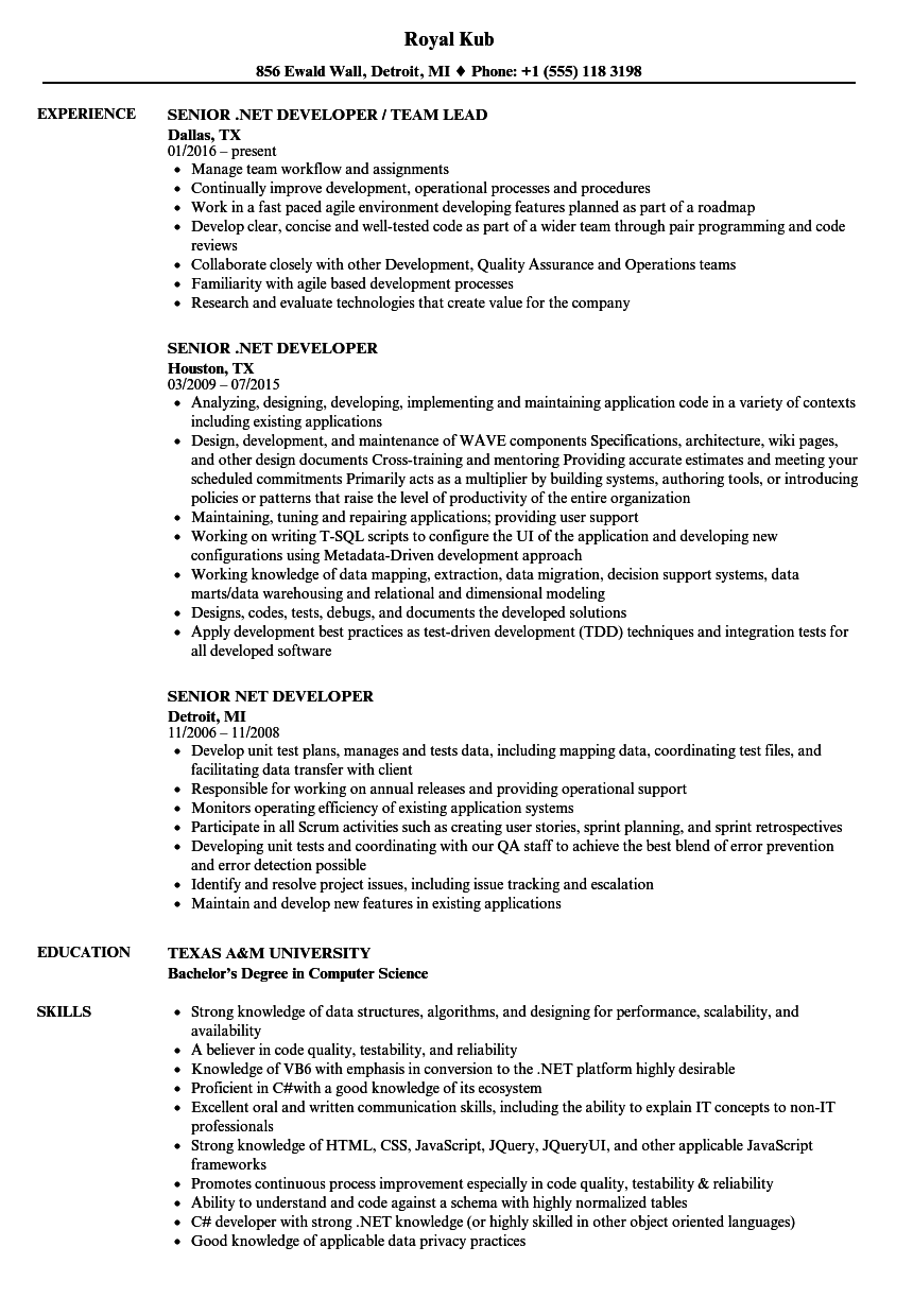Software Engineer Resume Sample in 2020 Software
