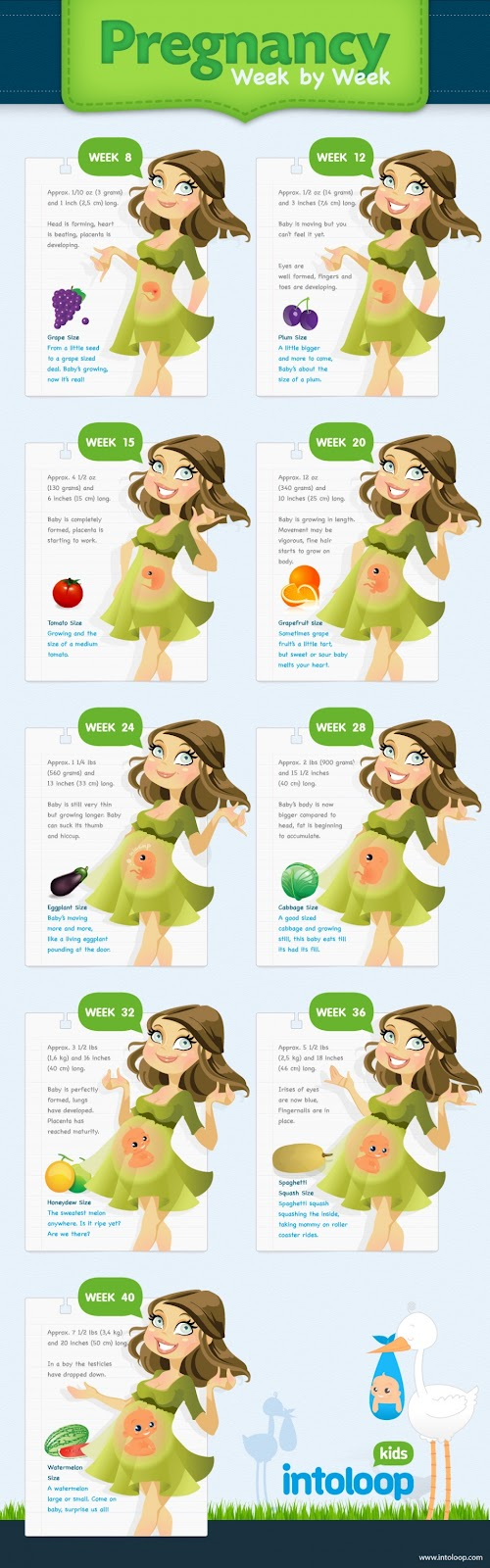 Esquemas gráficos informativos sobre el embarazo - Infographics pregnant
