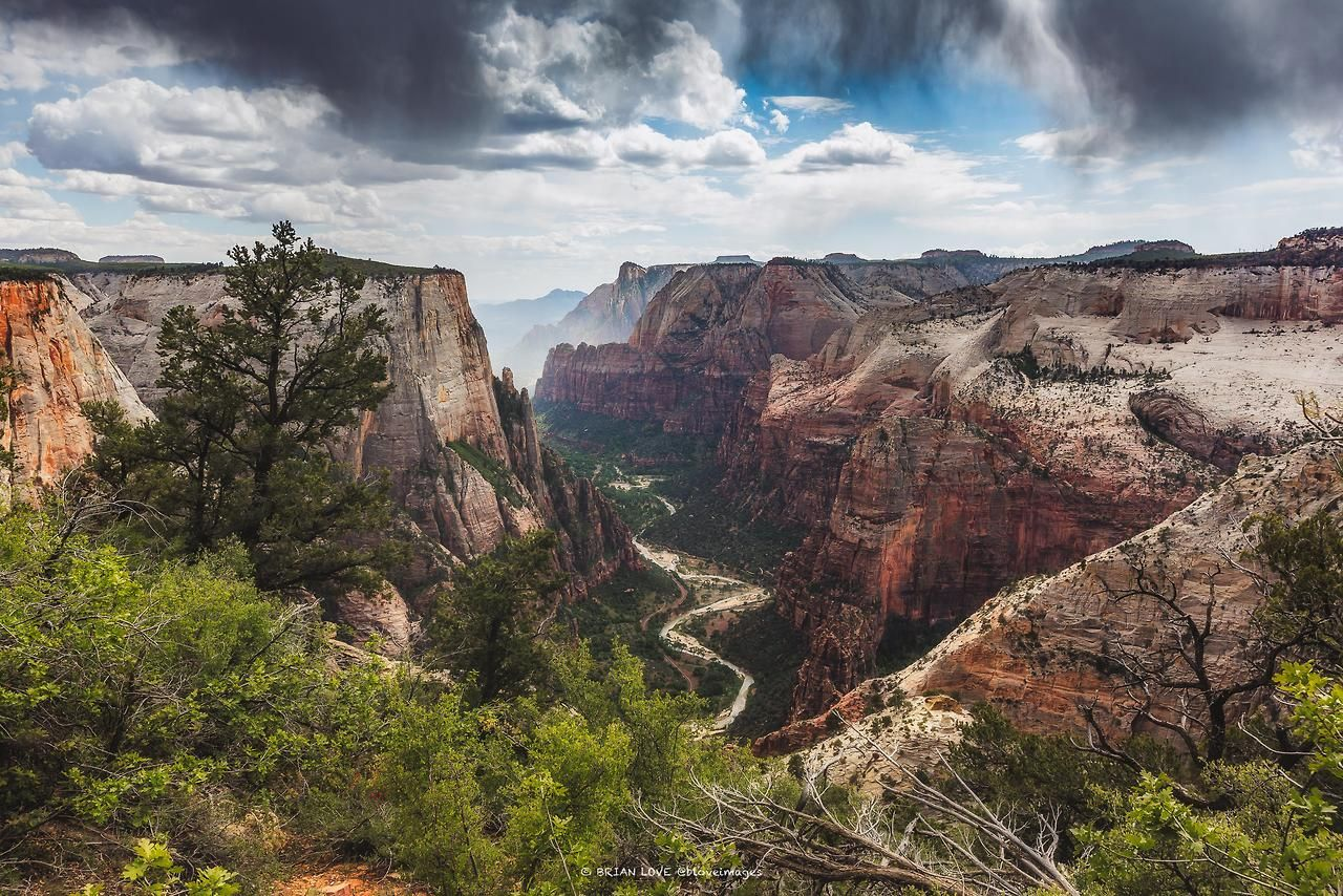 How could you not fall in love with this view atop the Observation Point Trail, Zion National Park? [OC] [4061 × 2708] Check this blog!