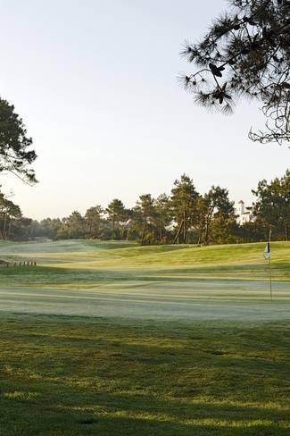28++ Barham golf ideas in 2021