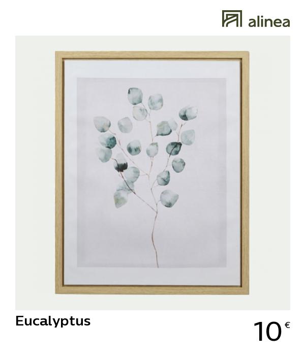 Alinea Eucalyptus Toile Encadree En Bois 50x40cm Deco Decoration Murale Tableaux Et Affiches Alinea Decoration B Meuble Deco Mobilier De Salon Deco