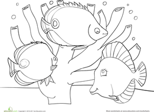 Coral Reef Coloring Page  Coral reefs Worksheets and Fish swimming
