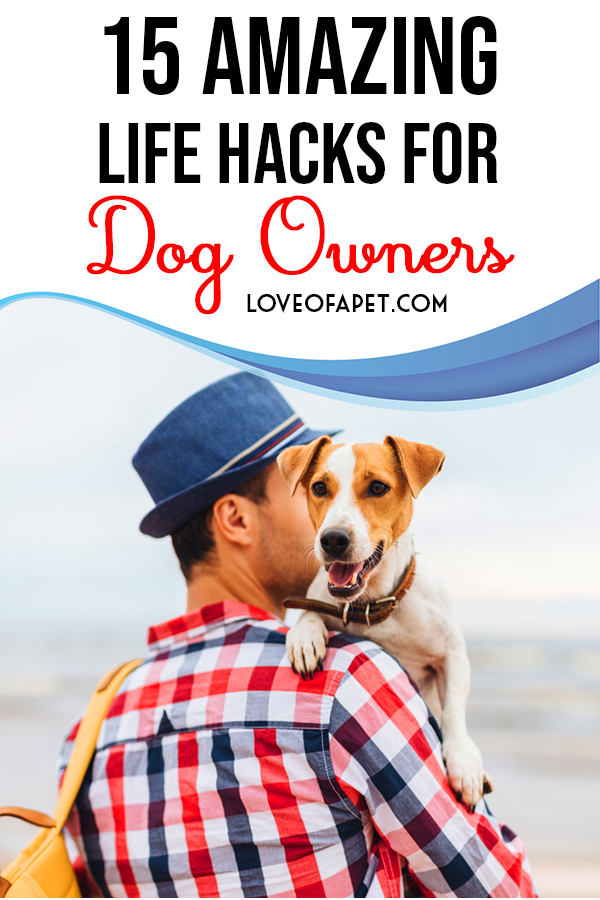 15 Amazing Life Hacks For Dog Owners Love Of A Pet Amazing Life Hacks Dog Mom Humor Dog Owners