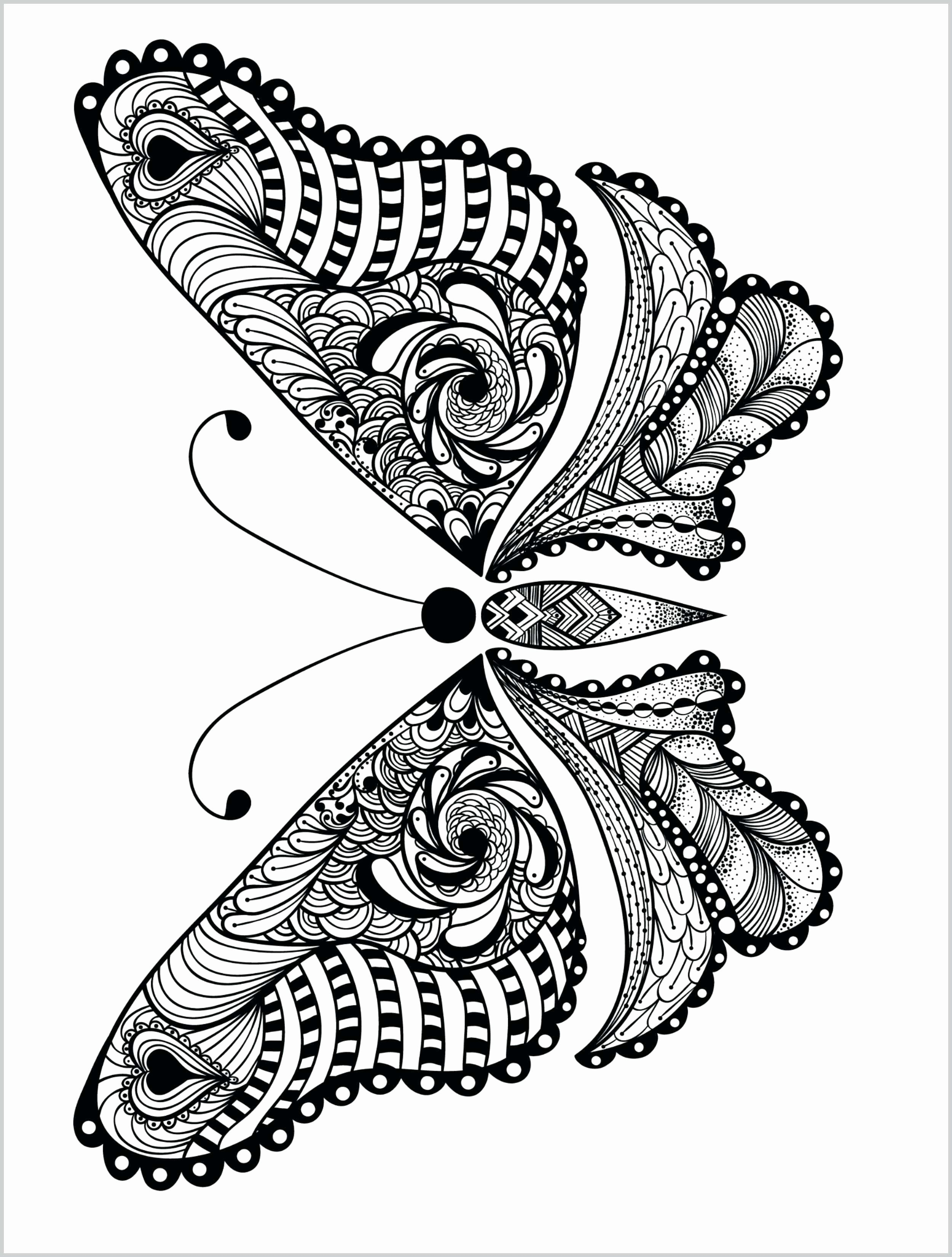 Pin On Animal Coloring Books [ 3300 x 2500 Pixel ]