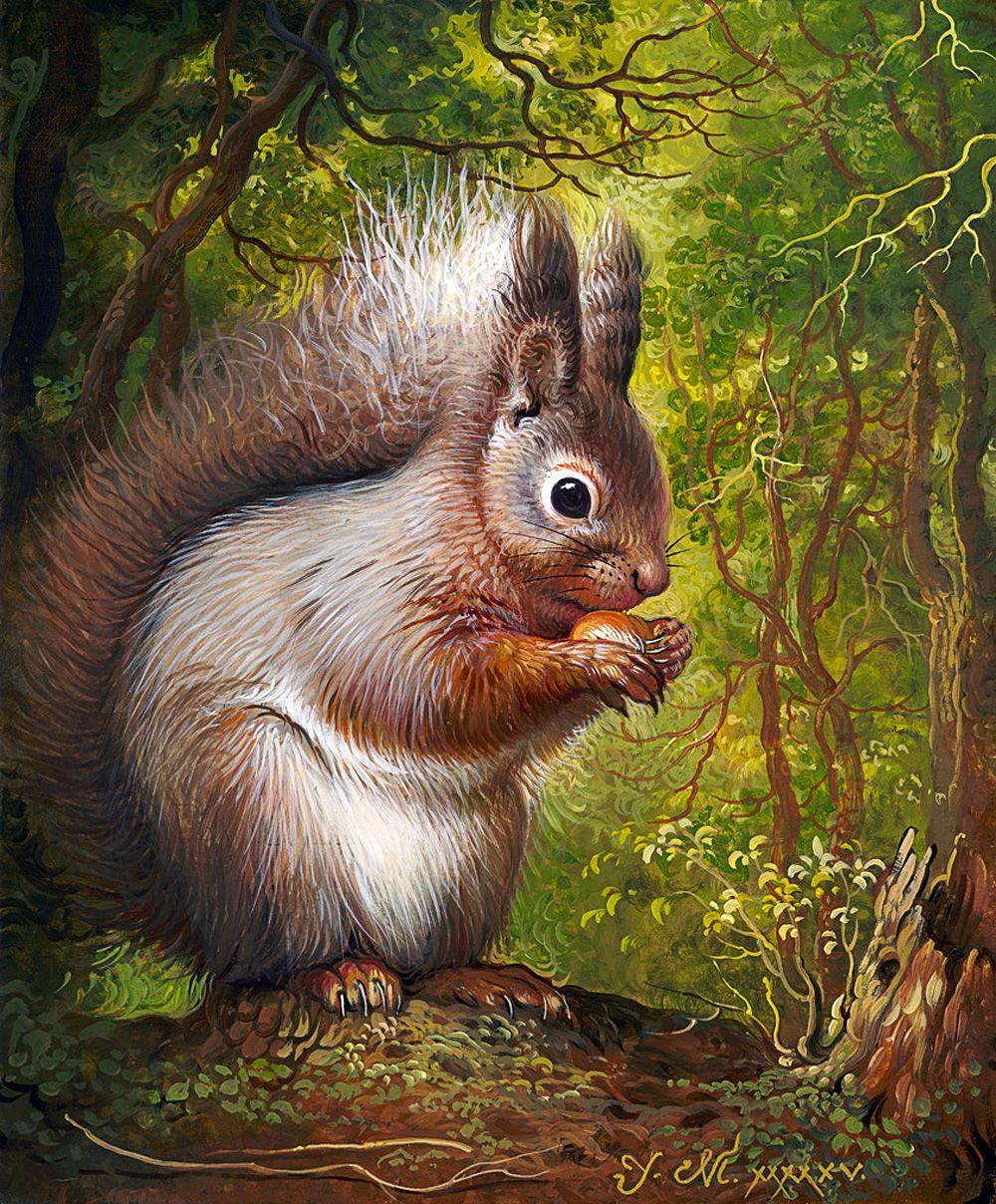 Животные леса рисунок