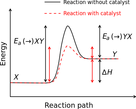 Schematic Potential Energy Diagram Showing The Effect Of A Catalyst