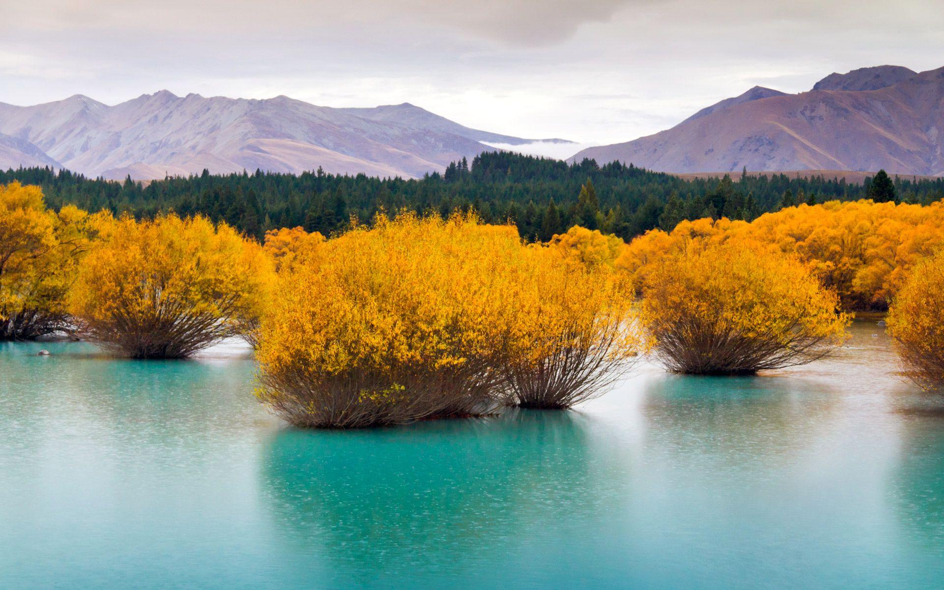 Souvent Terre/Nature Paysage Nouvelle Zélande Montagne Lac Forêt Nature  IA95