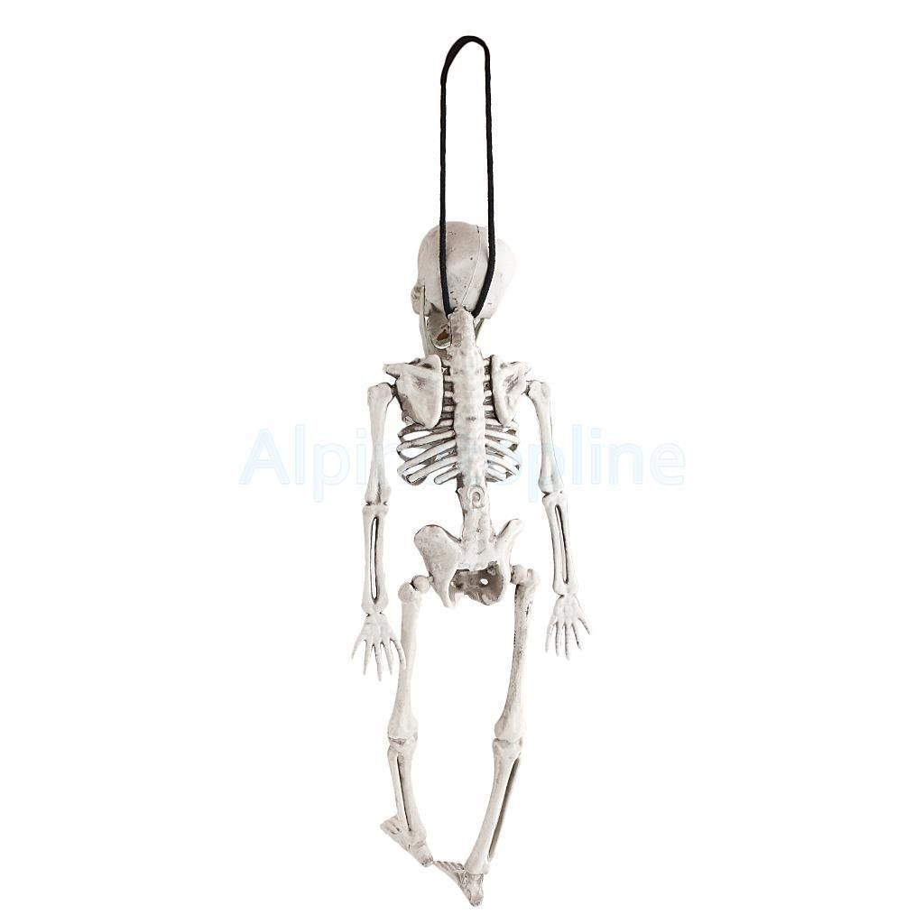 Scary Lifelike Halloween Human Skeleton Skull Haunted House - halloween house decoration