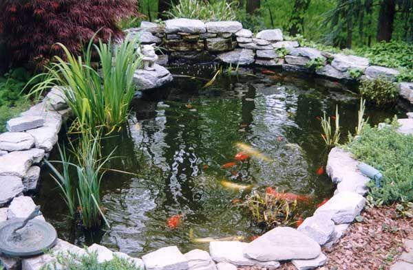 koi pond Gardening - Water Features Pinterest Jardineria en