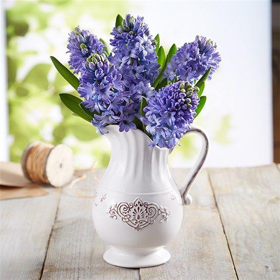 1-800-FLOWERS® FRESH MARKET BLUE HYACINTH BOUQUET   The Flower ...
