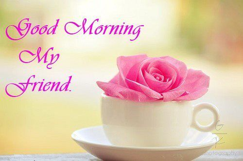 Happy Morning My Dear Friend Motivational Quotes And Jokes Morning Quotes For Friends Good Morning My Friend Good Morning Friends