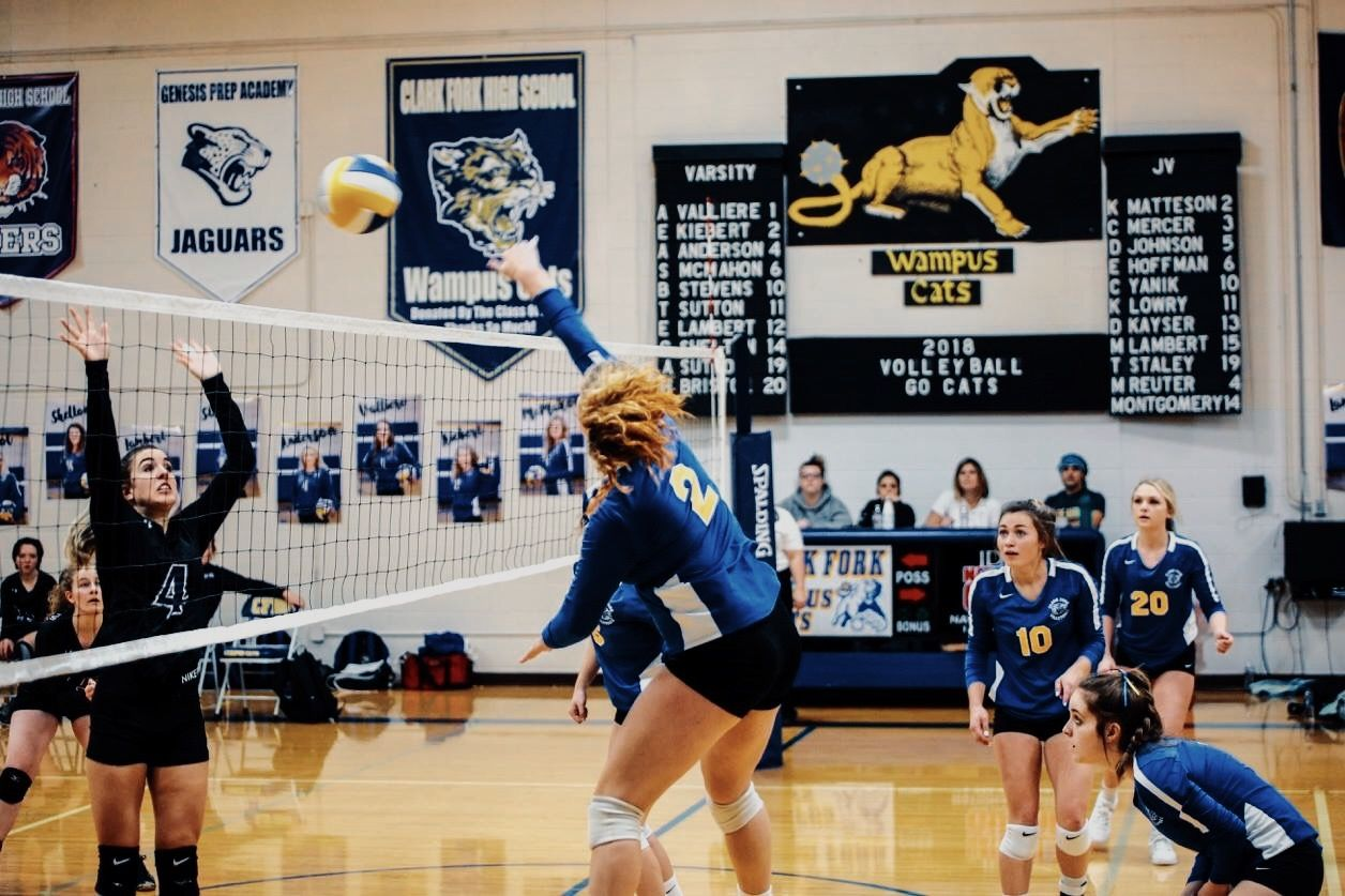 Pin By Evk On Volleyball Volleyball Sports Jaguars